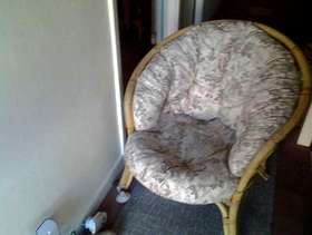 Freecycle Conservatory chair