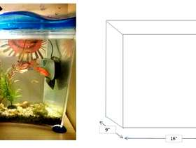 Freecycle 2 fish tanks with cold water fish