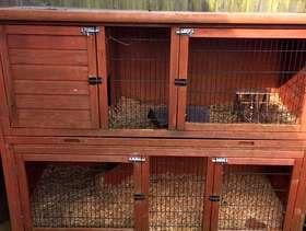 Freecycle Rabbit hutch