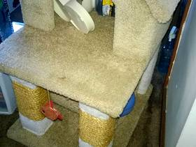 Freecycle Cat Condo