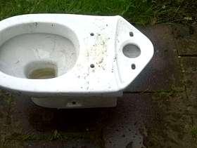 Freecycle Toilet Pan