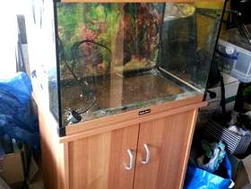 Freecycle Aquarium with stand and filter unit