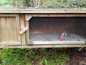 Freecycle Rabbit Hutch