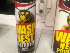 Freecycle Wasp nest killers