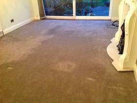 Freecycle Carpet for free