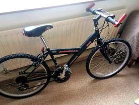 Freecycle Pushbike