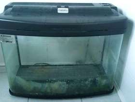 Freecycle Large fish tank