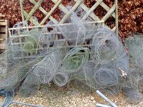 Freecycle Chicken wire