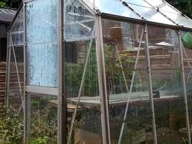 Freecycle Dorking Surrey 6 x 6 ft greenhouse