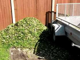 Freecycle Free woodchip in South Hams area, delivered to you.