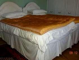Freecycle Single divan bed X 2