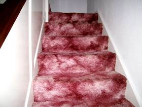 Freecycle Stair and hall carpet