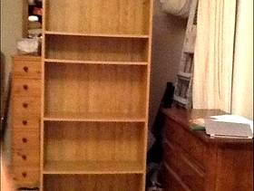 Freecycle Bookcase