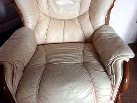 Freecycle Leather suite