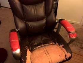 Freecycle Executive Desk Chair