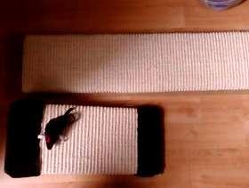 Freecycle Cat scratch board
