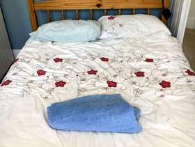 Freecycle Double bed frame and mattress
