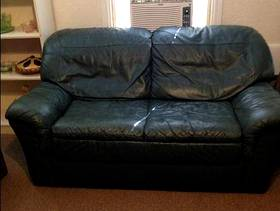 Freecycle Leather Loveseat Green
