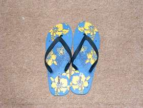 Freecycle Flip flops, BRAND NEW.