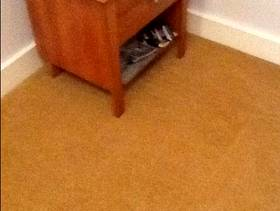 Freecycle 2 carpets