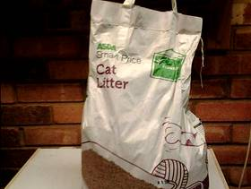 Freecycle Cat litter