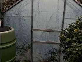 Freecycle Glass greenhouse