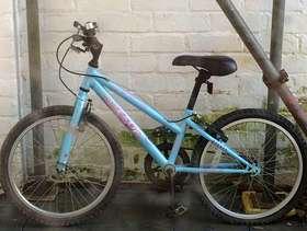 Freecycle Girls bike