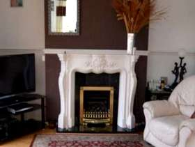Freecycle White Ornate Fire Surround