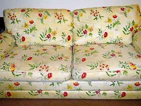 Freecycle Large Sleeper Couch