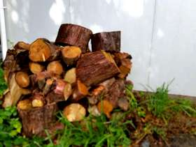 Freecycle Free logs and firewood