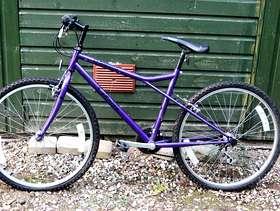 Freecycle Youth Boy/Girl Bike
