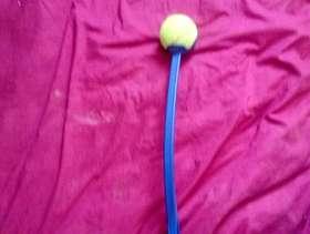 Freecycle Dog ball thrower