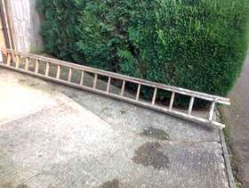 Freecycle Ladder