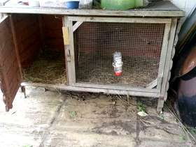 Freecycle Rabbit Hutch - Outdoor