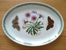 """Freecycle PORTMEIRION Huge Botanic Garden Oval Platter 13""""GAZANIA RINGENS / TreasureFlower"""