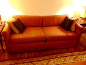 Freecycle Couch/Sofabed