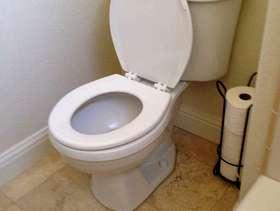 Freecycle American Standard Toilet