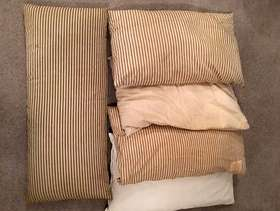 Freecycle Old feather pillows