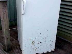 Freecycle FREE FRIDGE. Ugly but serviceable