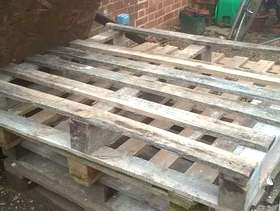 Freecycle Pallets available