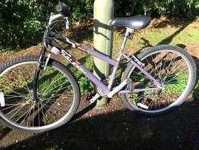 Freecycle Bicycle