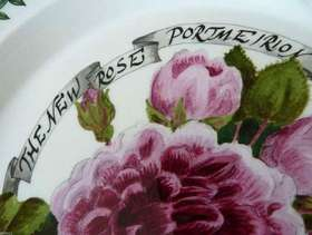"""Freecycle PORTMEIRION 10.5"""" Millennium Rose Plate, second quality, Limited Edition (2000)"""