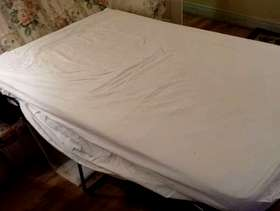 Freecycle Bed-Settee