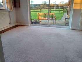 Freecycle Carpet (Used)