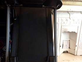 Freecycle Treadmill