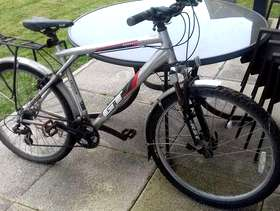 Freecycle GT Bicycle