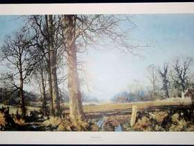 """Freecycle Unframed print """"March Sunlight"""""""