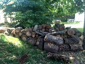 Freecycle Free logs of woods.