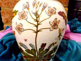Freecycle Portmeirion Vase 21cm tall, 12cm wide, DIONAEA Venus's Fly Trap, ...