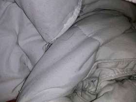 Freecycle Comforter, white polyester